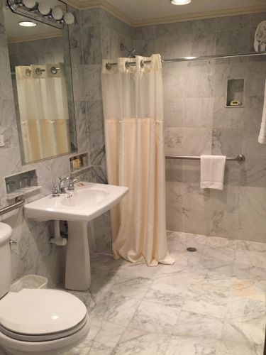 The Deluxe Accessible Queen rooms have a roll-in shower which are ADA compliant
