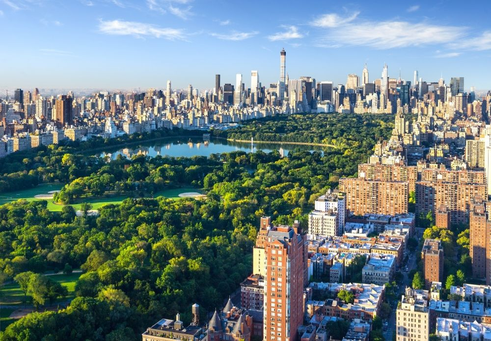aerial view of central park in the summer